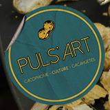 logo Puls'art